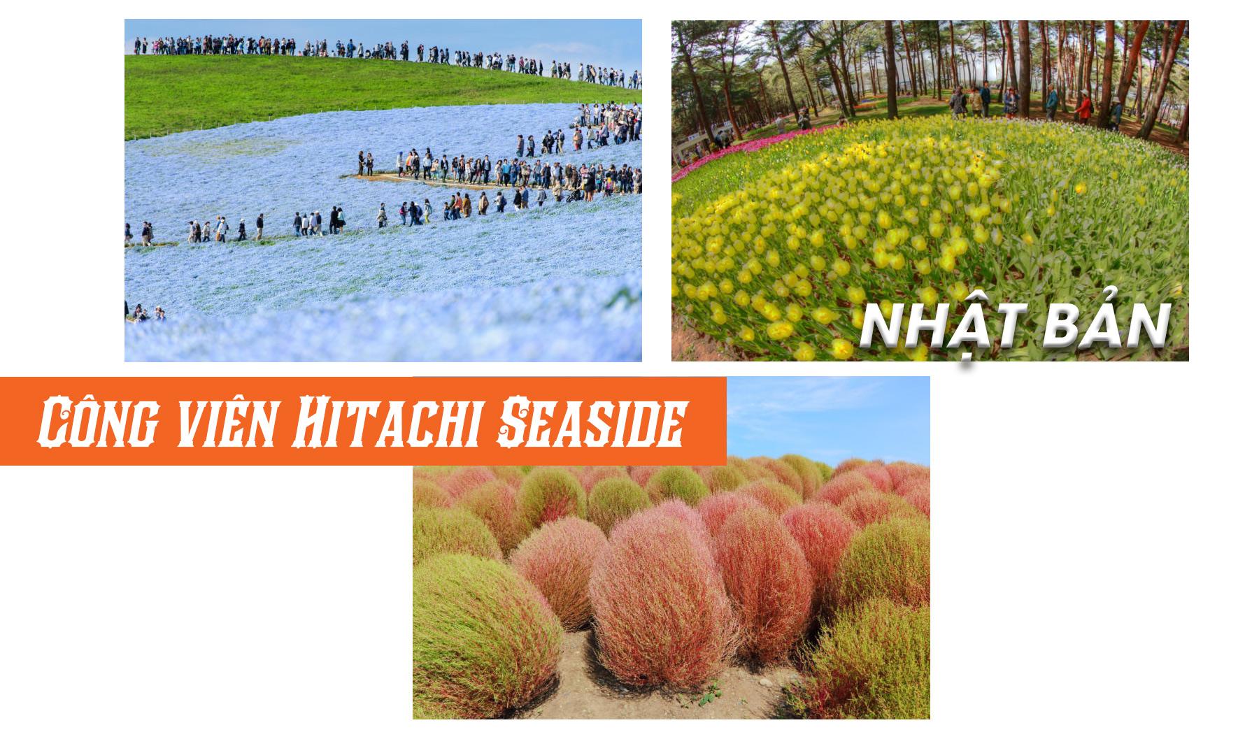 Top 10 phong cảnh mùa xuân đẹp nhất hành tinh - 5