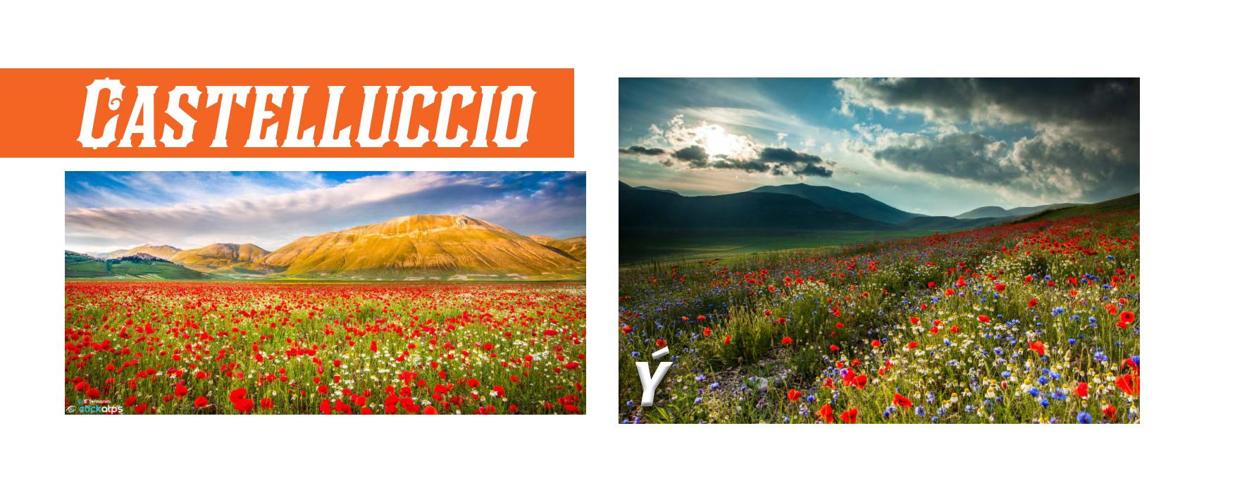 Top 10 phong cảnh mùa xuân đẹp nhất hành tinh - 9