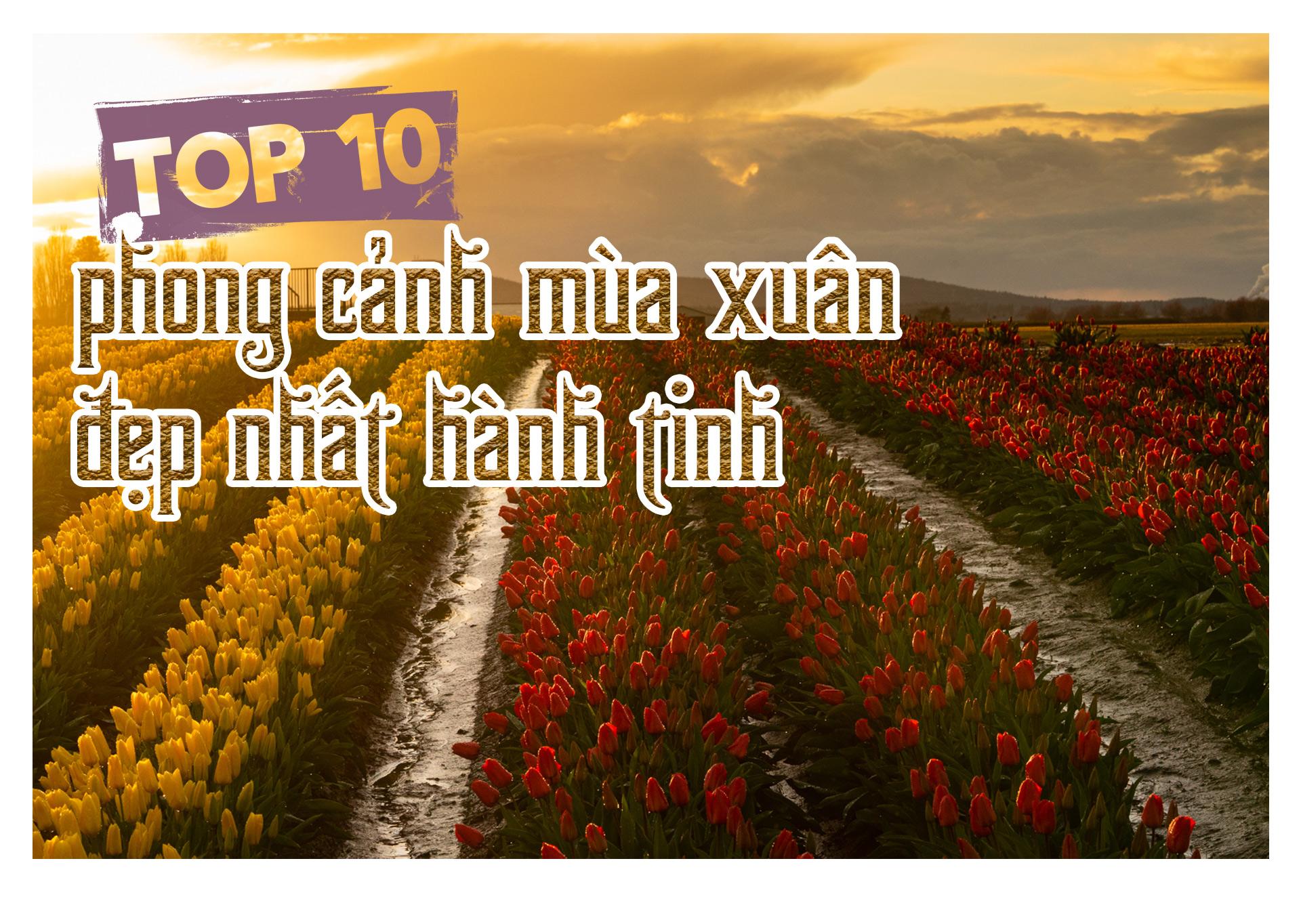 Top 10 phong cảnh mùa xuân đẹp nhất hành tinh - 1