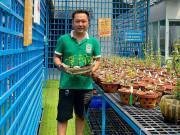 Nhịp sống trẻ - Nghệ nhân Trần Tấn Hiền hướng dẫn tưới nước cho hoa lan vào mùa hè sao cho đúng cách