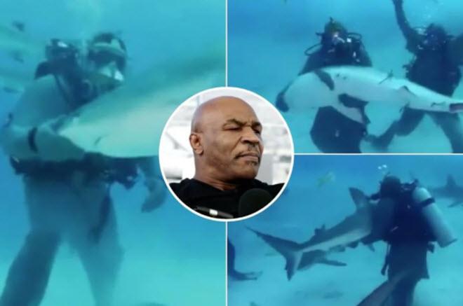 Mike Tyson xuống biển bơi với cá mập: Sư tử hung dữ bỗng như thỏ đế - 1