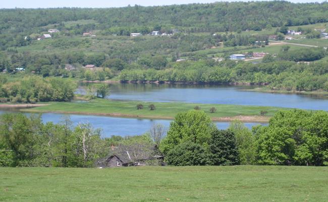 Đảo McGibbon tọa lạc trên dòng sông St.Johns, New Brunswick, Canada hiện đang được rao bán với mức giá chưa đến 29.900 USD (689 triệu đồng).