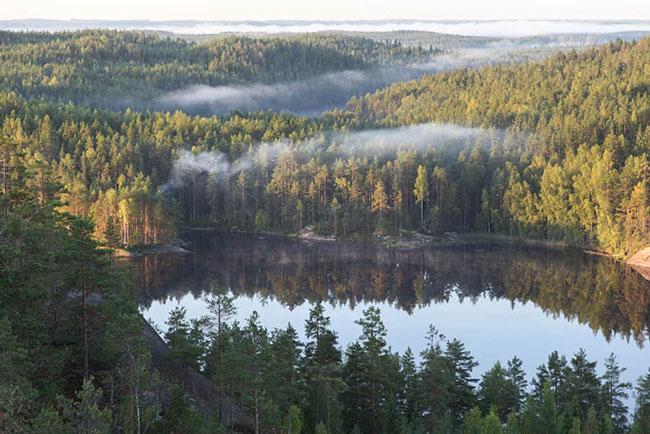 14. Vườn quốc gia Repovesi có những khu rừng tuyệt đẹp và làn nước xanh trong vắt. Nằm cách Helsinki chỉ 3 giờ từ thành phố Kouvola và Mäntyharju, khu vực này trước đây là nơi dành cho lâm nghiệp thương mại nay đã chuyển đổi thành một công viên quốc gia tuyệt đẹp.