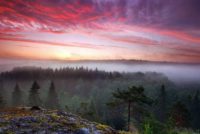 5. Vườn quốc gia Nuuksio là một địa điểm tham quan tuyệt đẹp ở Phần Lan, ngập tràn không khí trong lành, thiên nhiên và yên bình.