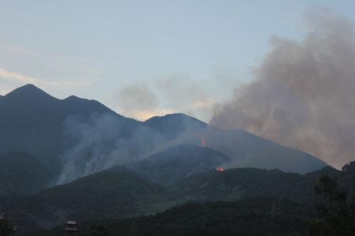 Nắng nóng, hàng chục hecta rừng bốc cháy - 1