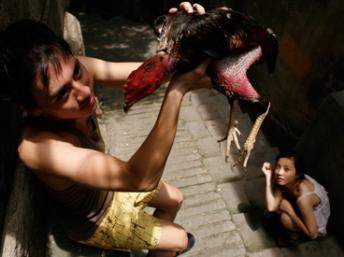 Phim Việt trình chiếu tại Cannes 2012 - 1