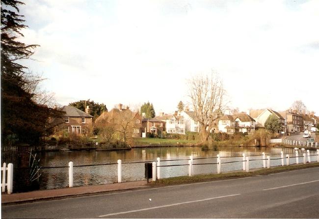 Ao làng, nơi vịt và thiên nga tung tăng bơi lội.