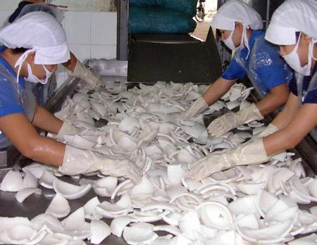 Thương lái Trung Quốc thao túng lúa, dừa khô - 1