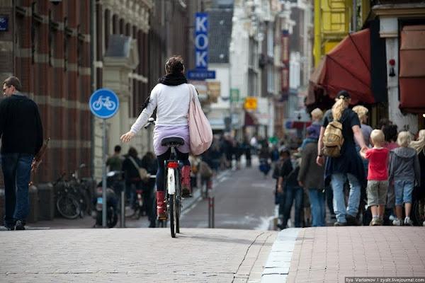 Lạ lùng thành phố toàn xe đạp - 1
