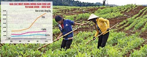 """Đời sống nông dân """"bồng bềnh"""" theo giá - 1"""