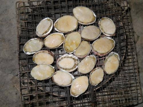 Ăn bào ngư ở Cù Lao Chàm - 1