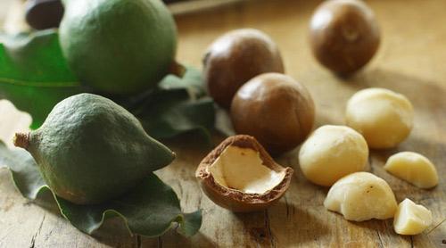 Macadamia: Hạt ngon nhất, đắt nhất - 1