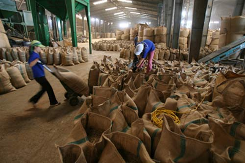 Nông sản Việt bị chê vì giá cao - 1