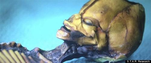 """Khám """"sinh vật ngoài hành tinh"""" giống người - 1"""