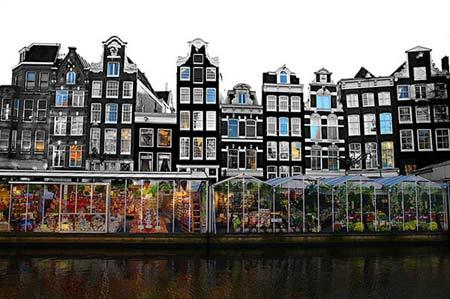 Chợ hoa nổi duy nhất trên thế giới tại Amsterdam - 1