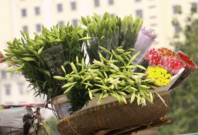 Hồng Anh dịu dàng bên sắc hoa tháng Tư  Tinh khiết như loa kèn tháng tư  Hoa loa kèn em cắm để chờ anh…  Nữ sinh Nhân văn khoe sắc cùng hoa loa kèn