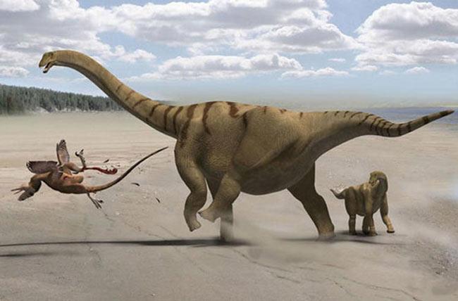 Khủng long cổ siêu dài. Đây là loài khủng long mặt đất lớn nhất từng tồn tại. Chúng có thể nặng 10, thậm chí là 100 tấn. Chúng lớn gấp 10 lần một con voi, và cố nó có thể dài tới gần 16m, gấp 6 lần cổ của một chú hươu cao cổ.