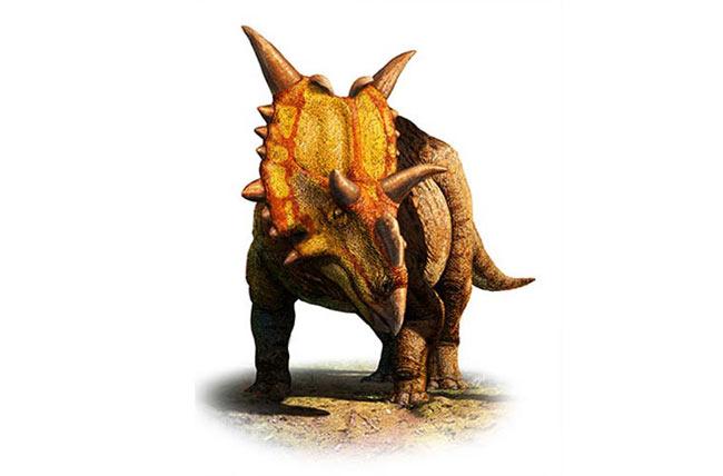 Khủng long sừng. Tên khoa học của loài này là Xenoceratops. Chúng nặng chừng 20 tấn. Điểm đặc trưng là loài này có nhiều gai nhọn trên đầu, 2 sừng ở trên trán và một \'tấm khiên\' bảo vệ xù xì vòng quanh cổ.