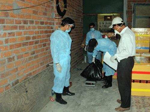 Công bố dịch cúm H5N1 trên đàn chim yến - 1