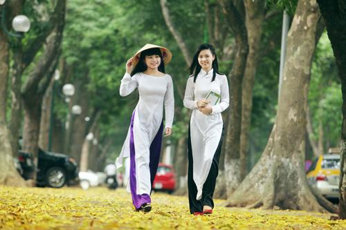 Thiếu nữ Việt lãng mạn mùa lá sấu rụng - 1