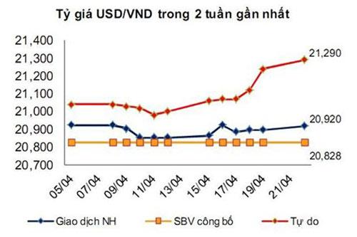 """USD tự do """"nung nóng"""" tỷ giá ngân hàng - 1"""