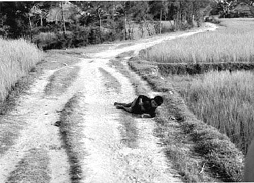 Người đi tìm sự thật ảnh thảm sát Mỹ Lai - 1