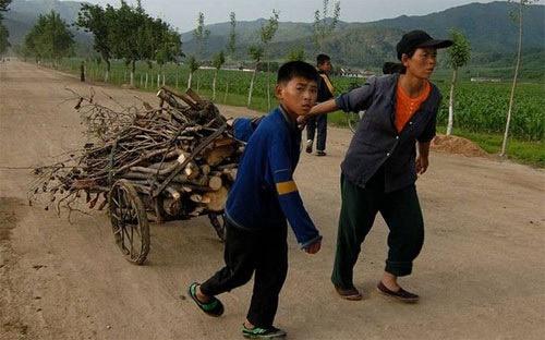 """Triều Tiên: Con đường kinh tế """"mờ mịt"""" - 1"""