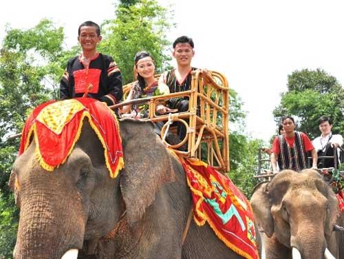 Đám cưới rước dâu bằng... 20 con voi - 1