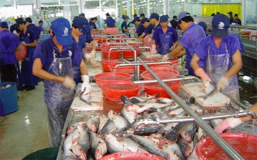 Xuất khẩu tôm, cá tra tăng mạnh trong tháng 5 - 1