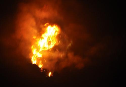 Đã dập tắt được đám cháy rừng gần 30 ha - 1