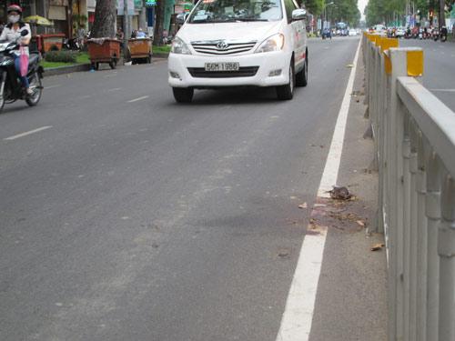 Bắt tài xế tông chết công nhân vệ sinh - 1