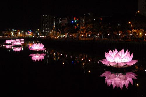 Bảy đóa sen hồng khổng lồ trên kênh Nhiêu Lộc - 1