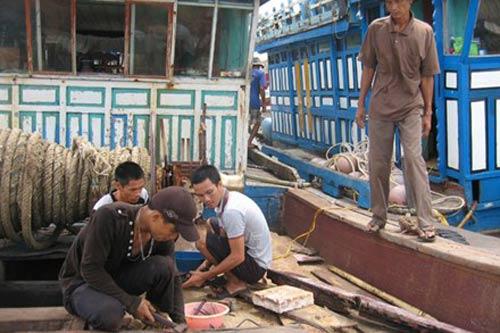 """Hàng trăm ngư dân làm """"chui"""" cho tàu cá TQ - 1"""