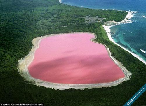 Thăm đồng muối hồng rực tựa bức tranh ấn tượng - 1