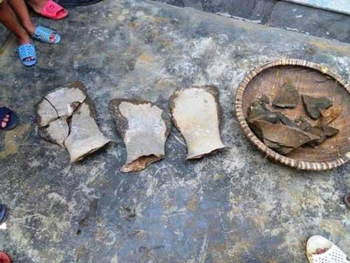 Đào giếng tìm được xương khủng long hóa thạch - 1