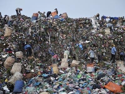 Thân vạc nơi bãi rác Nam Sơn - 1