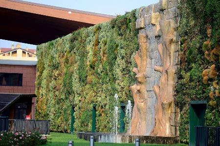 Những bức tường 'sống' của thiên nhiên - 1