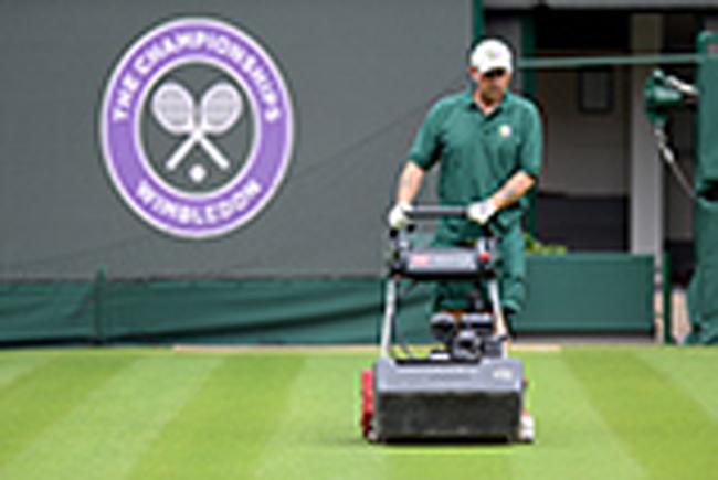 Đội ngũ chăm sóc sân đấu vẫn cần mẫn chăm sóc từng cọng cỏ trên sân.