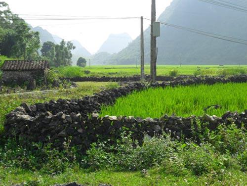 """Độc đáo làng """"đá"""" ở Cao Bằng - 5"""