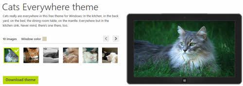 Giao diện Windows dành cho người yêu Mèo - 1