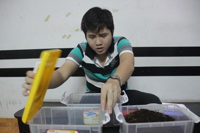 Giới trẻ Sài Gòn mê nuôi bọ cánh cứng - 1