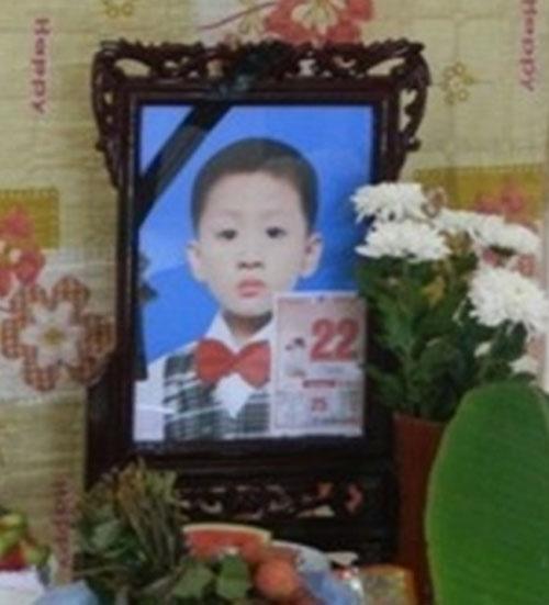 Lời khai của người mẹ sát hại con trai 8 tuổi - 1