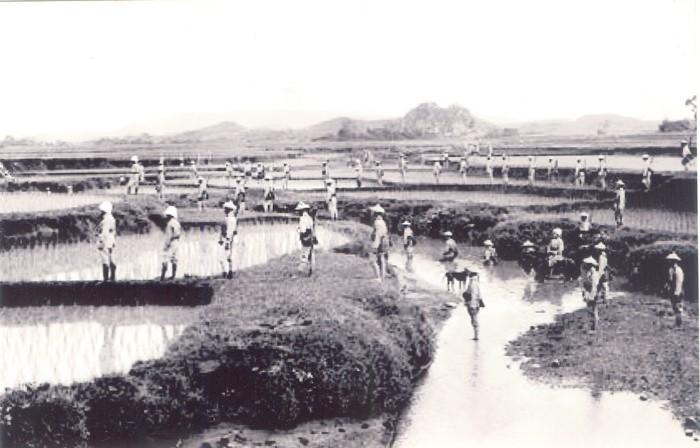 Nhìn lại chiến tranh Việt Nam qua những bức ảnh của AP - 1