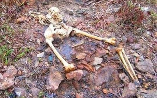 Vào rừng soi ếch, tá hỏa thấy bộ xương phụ nữ - 1