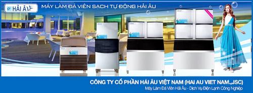 Hải Âu Việt Nam và khát vọng chiếm lĩnh thị trường đá viên sạch - 1