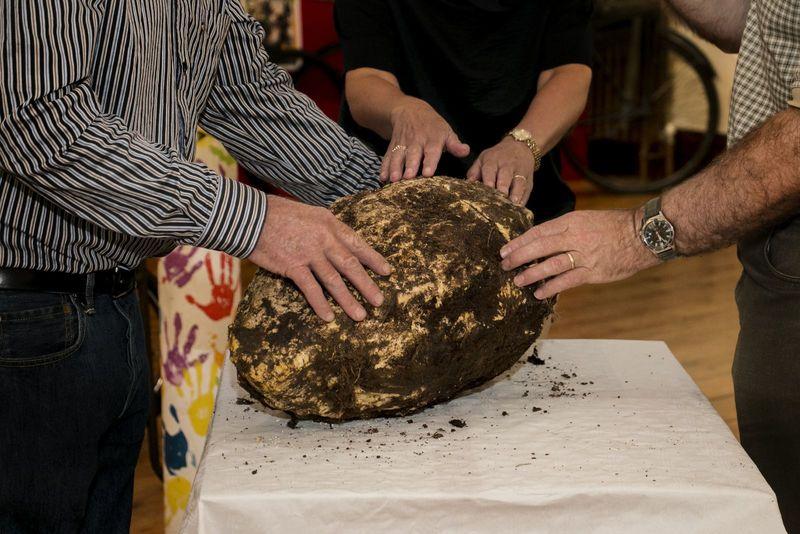 Tìm thấy bơ 2.000 năm tuổi vẫn ăn được - 1