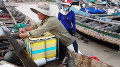 Đến Cửa Tùng săn tôm hùm, kiếm tiền triệu mỗi ngày - 4