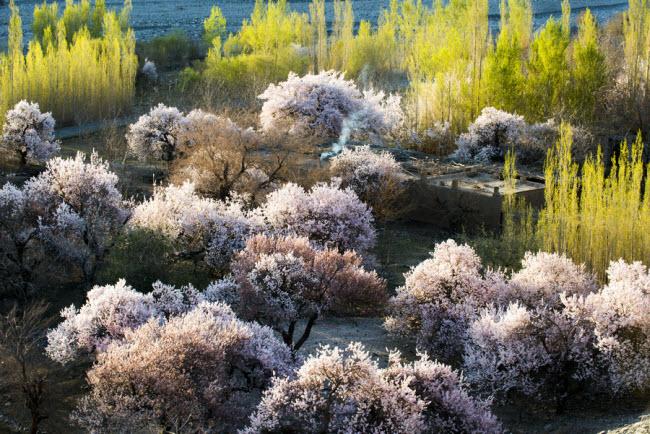 Thiên nhiên đẹp như tranh vẽ ở vùng Tân Cương - 2