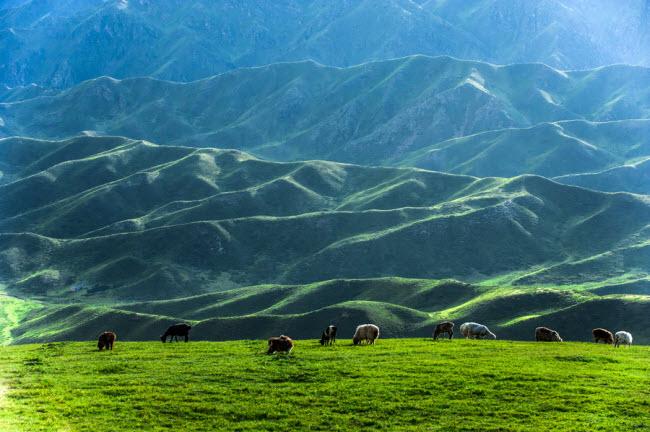 Thiên nhiên đẹp như tranh vẽ ở vùng Tân Cương - 4