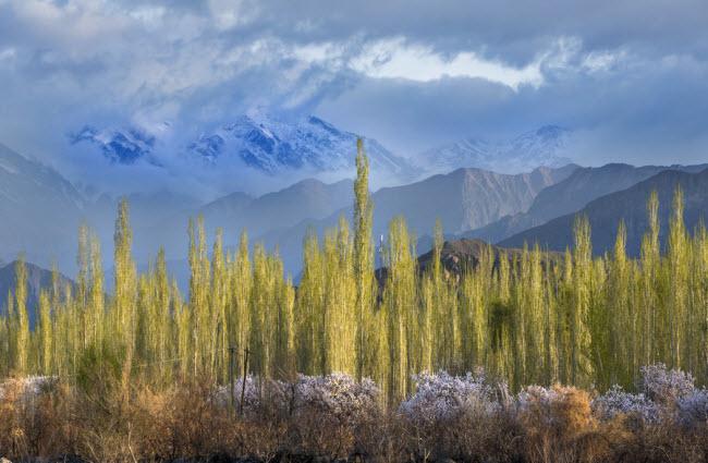Thiên nhiên đẹp như tranh vẽ ở vùng Tân Cương - 6